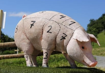 猪企成本pk:最低8元,最高15元!部分陷入亏损!猪价何时再涨?
