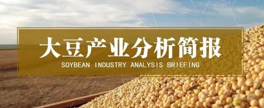 大豆进口依存度超85%,耕地有限自给率难有大幅提升