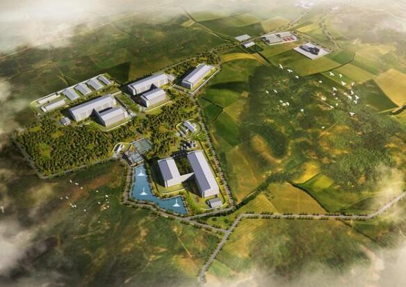 浙江加华生猪育种项目争取中央投资500万元,市本级唯一!
