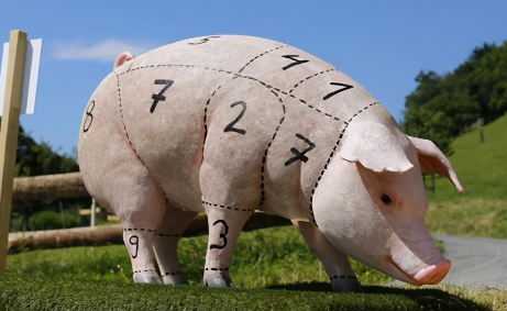 多家猪企公布5月销售数据,新希望股价跌幅高达65%,市值蒸发1239亿!