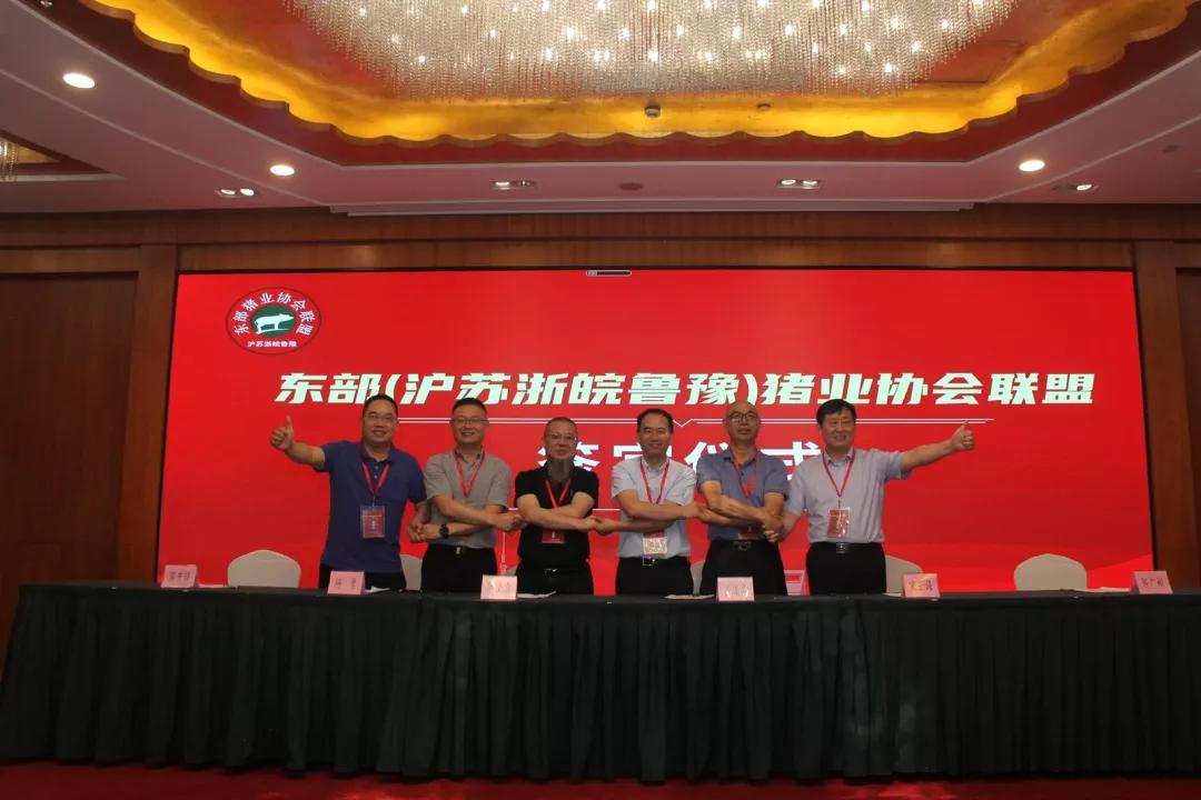 携手同行,互通共融,东部五省一市共同签订了《东部猪业协会联盟书》