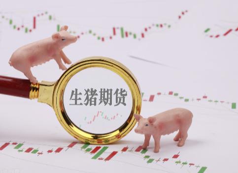生猪迫降:6月上旬跌超10%,期货价格创历史新低
