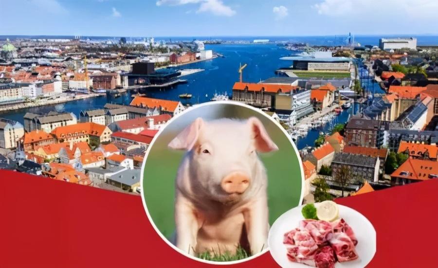 中国猪肉进口市场状况,未来中国市场正在日益多样化!