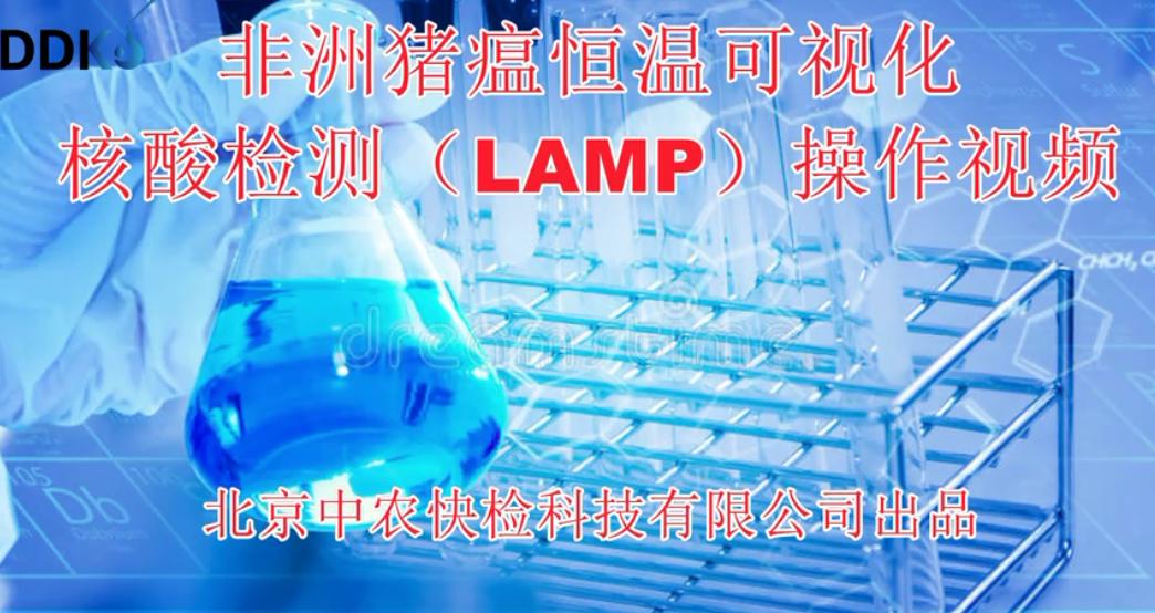 滴滴快检DDKJ中农快检非洲猪瘟恒温可视化核酸检测LAMP操作视频
