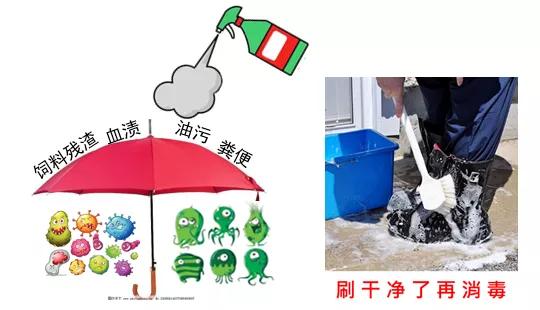 防止病原微生物在猪场内交叉传播,就从小盆子,大门道做起!
