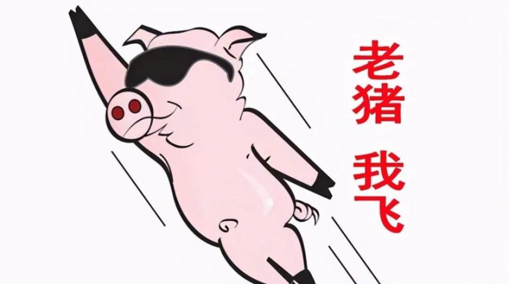 """注意:事出反常必有""""妖"""",猪价""""涨翻天""""究竟谁在""""搞鬼""""?不知对否"""