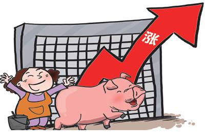 猪肉价格过度下跌官方示警生猪期货连续四日回升,猪肉股触底反弹集体跟涨