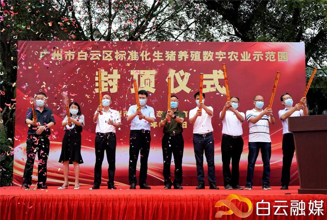 好消息!白云区标准化生猪养殖数字农业示范园主体大楼封顶,是广州市首家集约化楼房式生猪养殖场