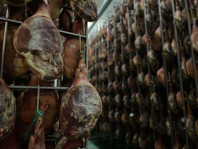 猪价止跌反弹,回升最佳时点或未到来?猪价反弹能维持多久?