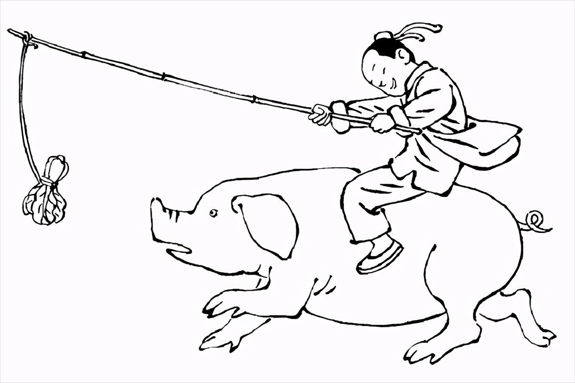 母猪管理的六大阶段,新手养殖户该如何喂?