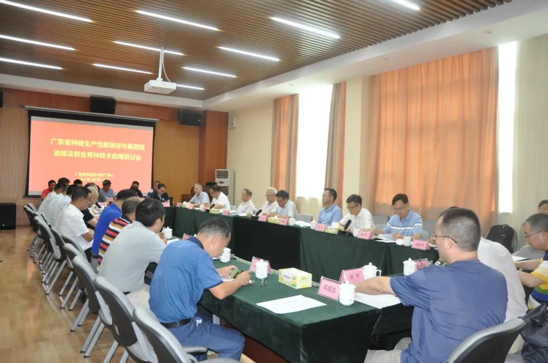 强猪先强种!建立生猪种业大数据共享平台,推进广东生猪种业高质量发展