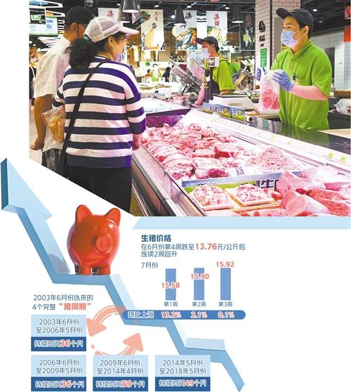 今年全国猪肉价格深跌,中央启动出本猪肉收储,何时能走出下跌周期?