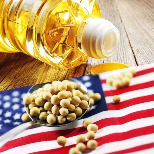 豆油、豆粕饲料仍被外豆掌控!我国大豆采购占全球70 %,释放两大市场信息