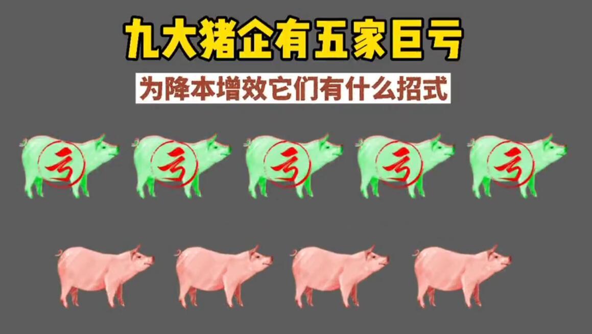 九大猪企有五家巨亏,为降本增效它们有什么招式?