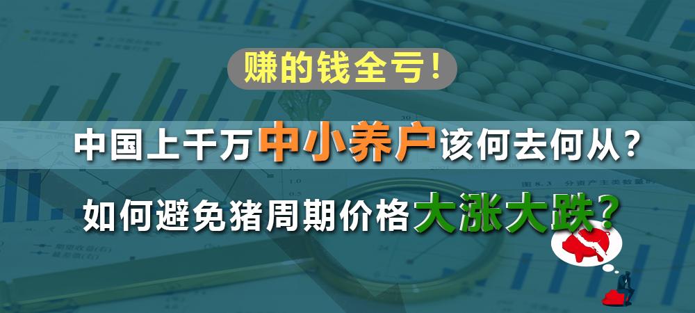 去年养猪赚的钱今年全亏了!中国2000多万中小养户该何去何从?如何避免猪周期价格暴涨暴跌?