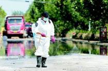 河南省生猪产业技术体系:灾后养猪场要严防疫情风险!
