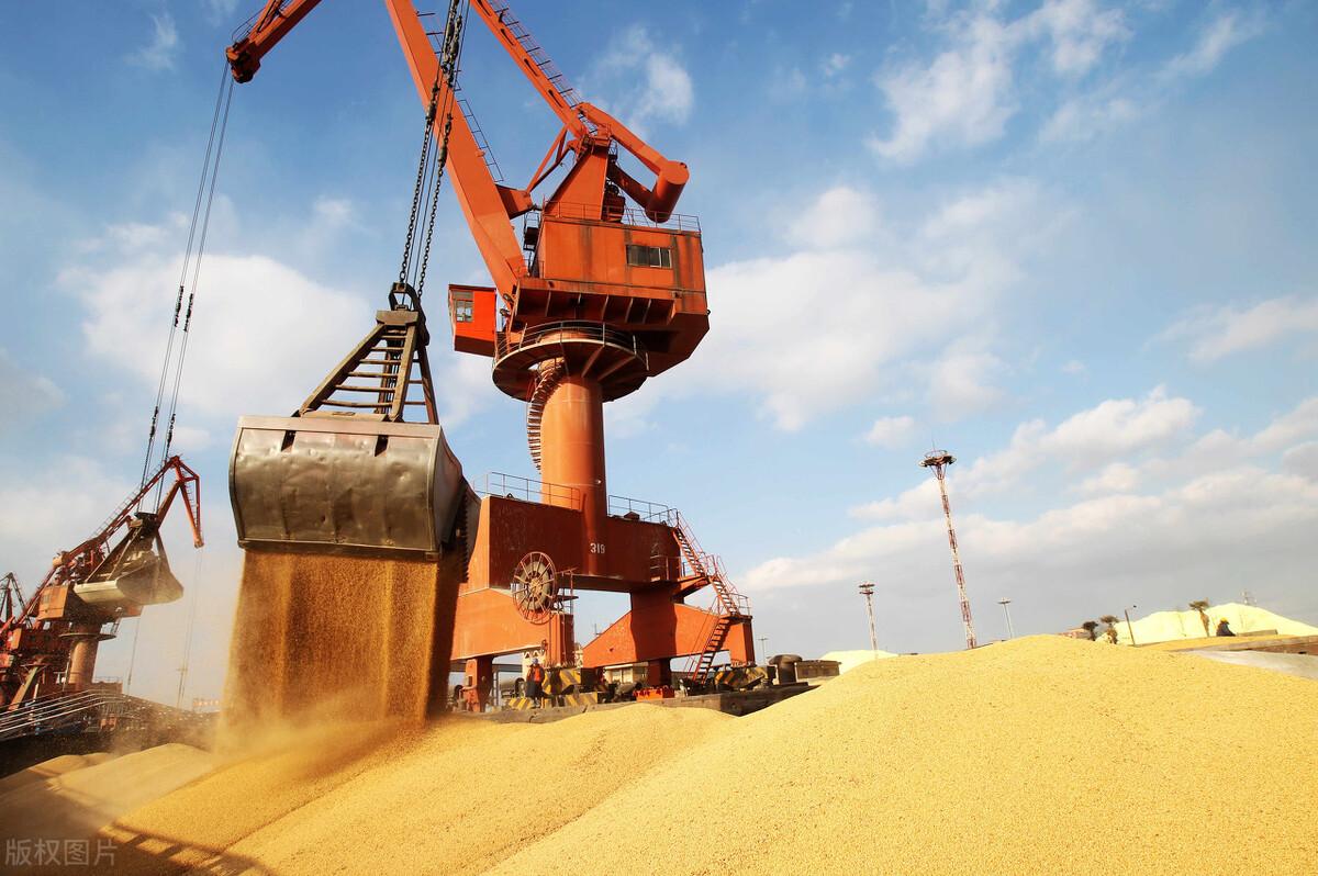 大豆出现大转变!美国、巴西大豆出口双双骤减!咋回事?大豆没人要了?