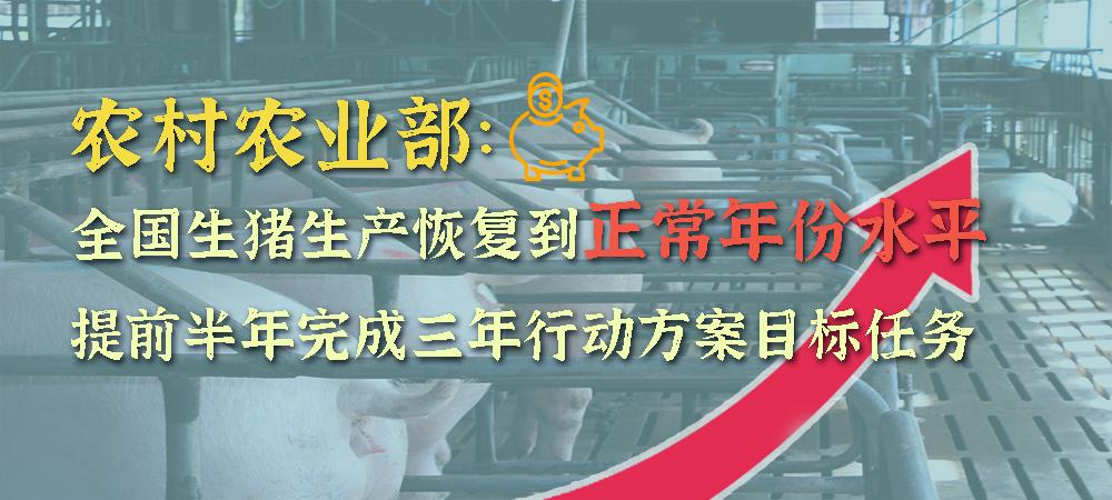 农村农业部:全国生猪生产恢复到正常年份水平,提前半年完成三年行动方案目标任务