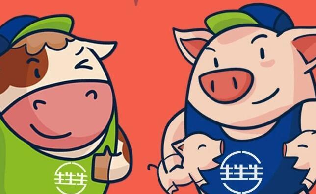 养猪亏损如何破局?四川农大林燕博士:注重种猪营养,助力降本增效!