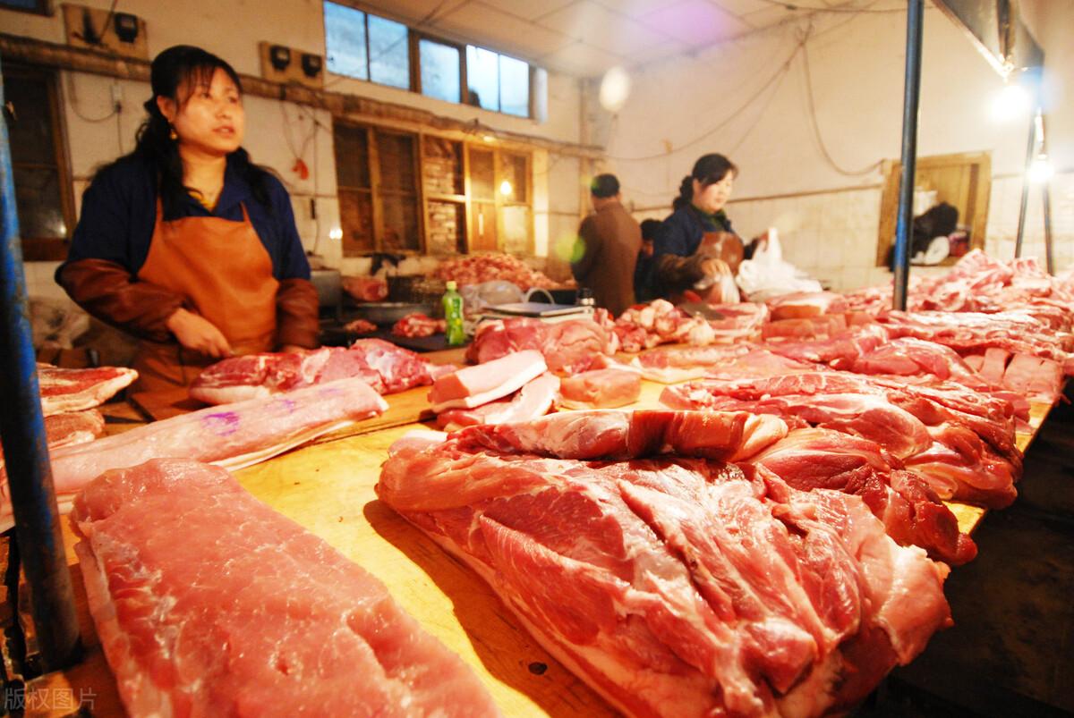 市场多种不确定因素?9月后猪肉市场又会发生怎样的变化猪肉市场能否崛起?