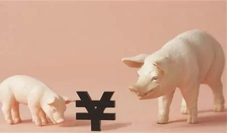 猪市走势:猪市涨跌拉锯,猪价持续徘徊在15元,未来猪市又回20的趋势!