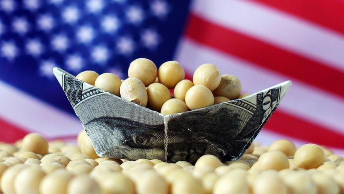 美豆大幅上涨的动力不足,豆粕缺乏上涨动力