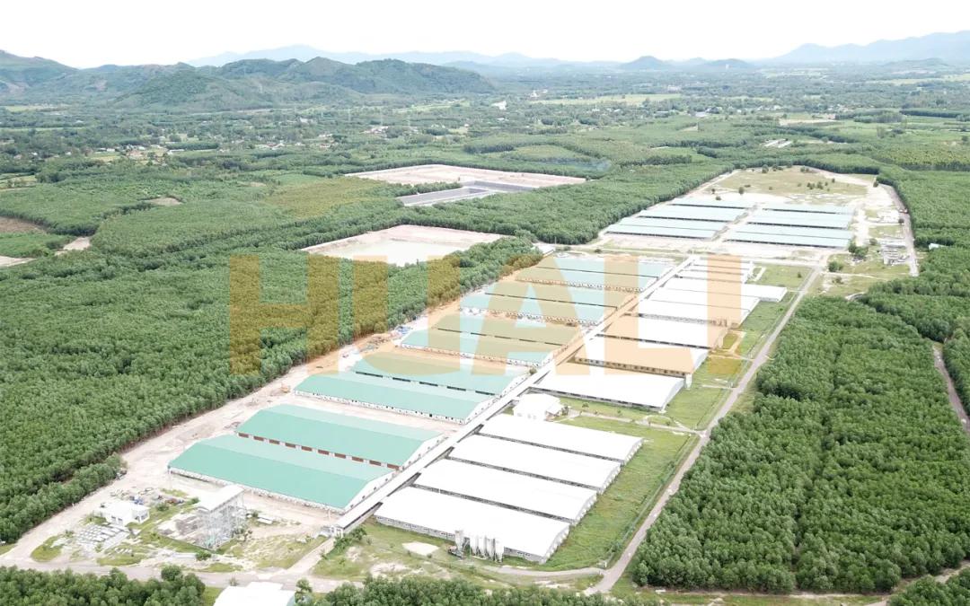 好消息!华丽科技助力越南6000头母猪场项目顺利验收