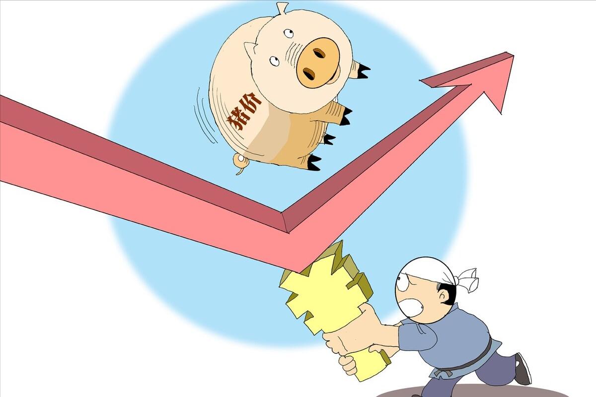 """价连跌10天终于迎来""""由跌入涨""""的行情,9月猪价要""""涨到月底""""?看完心里有数了!"""