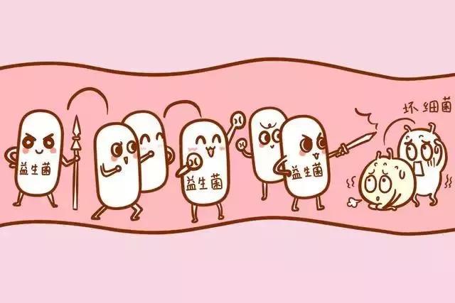 杨彩梅教授:益生菌产品的突破性应用