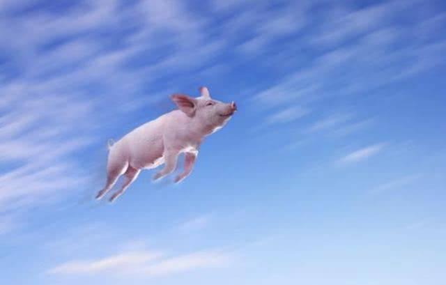 首农食品:3座生猪养殖基地全部投产,年供应量25万头
