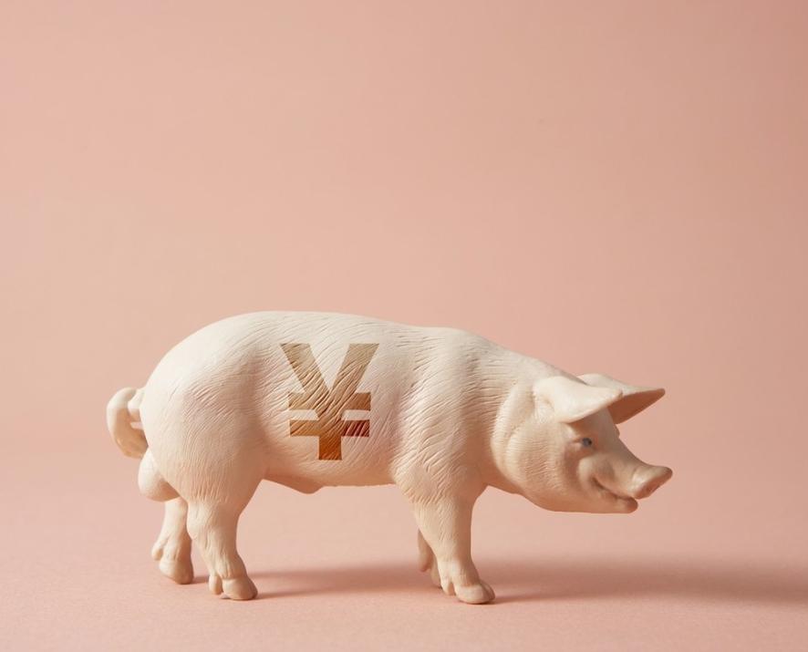 猪肉股集体大反攻,猪肉板块大涨4%