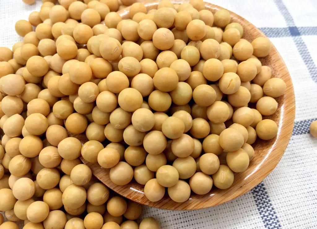 国内豆粕随着成本端波动的下降窄幅震荡