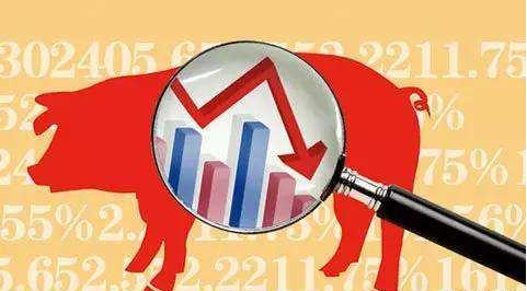 中秋节现货涨价不及预期,生猪期货跌幅达到5.16%,下跌行情结束了吗?