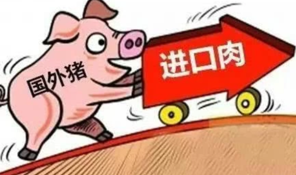 中国进口量减少,需求降低, 西班牙养猪业告别黄金年代