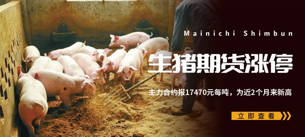 生猪期货涨停,主力合约报17470元每吨,为近2个月来新高