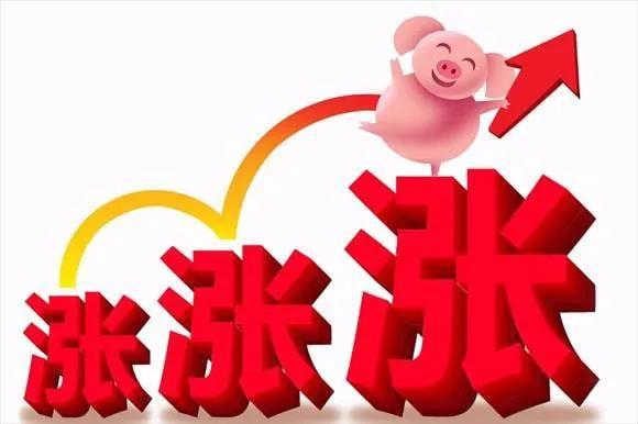 """太刺激!猪价""""涨翻天"""",生猪价格顺利""""破8冲9"""""""