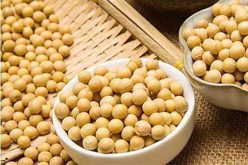 2021年10月26日全国各省市豆粕价格行情,利好利空交织,后期豆粕价格震荡调整为主